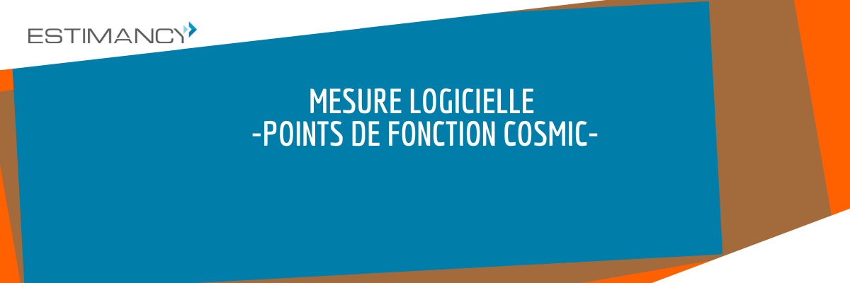 Points de Fonction COSMIC